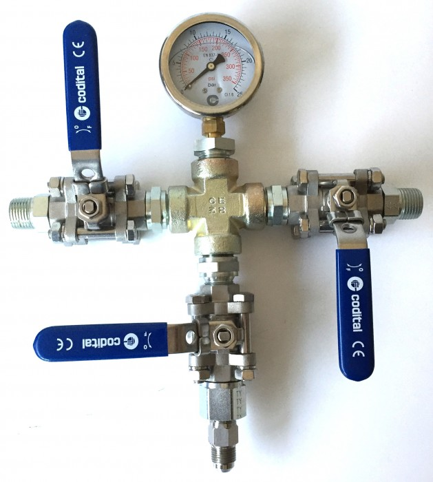 Croix-12-NH3-CO2